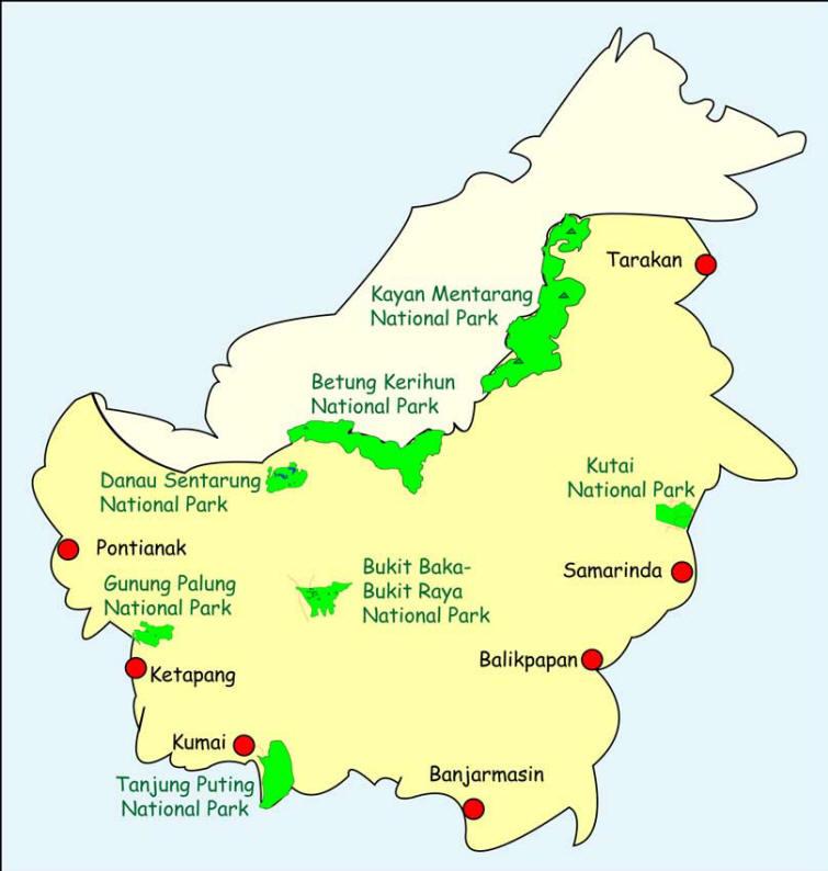 kutai Kalimantan-National-Park